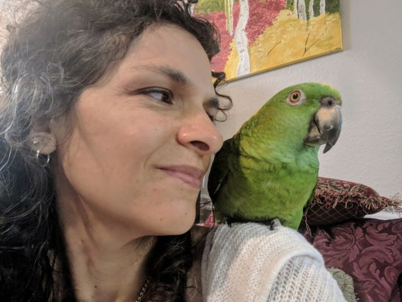 Fatty Liver Disease In My Yellow-Naped Amazon