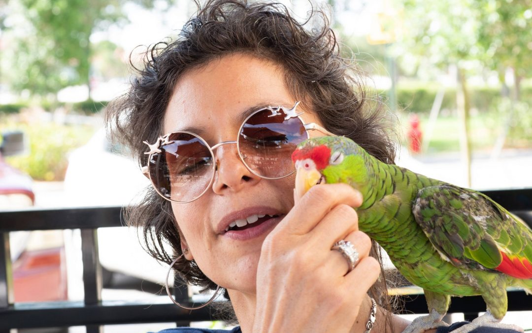 What Are Amazon Parrots Like As Pets?